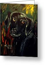 Black Lab IIi Greeting Card
