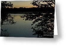 Black Oak Greeting Card