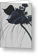 Black Orchid Greeting Card