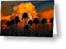 Black Palms At Dusk Greeting Card