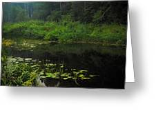 Black Pond Greeting Card