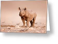 Black Rhinoceros Baby Greeting Card