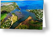 Black River Mouth 3 Greeting Card