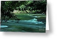 Black River Nj Greeting Card