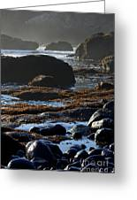 Black Rocks Lichen And Sea  Greeting Card