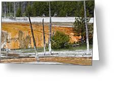 Black Sand Basin Therma Runoff Yellowstone Greeting Card