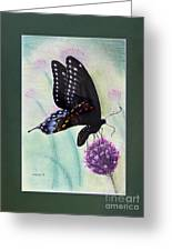 Black Swallowtail Butterfly By George Wood Greeting Card