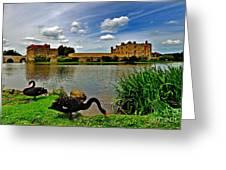 Black Swans At Leeds Castle II Greeting Card