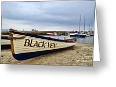 Black Ven Greeting Card