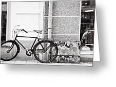 Black Vintage Bicycle Greeting Card by Jimmy Karlsson