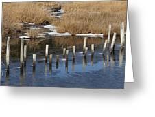 Black Water Wild Greeting Card