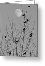 Blackbirds By The Moon Greeting Card