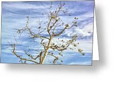 Blackbirds In A Tree Greeting Card