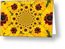 Blackeyed Susan Kaleidoscope Greeting Card