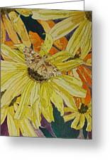 Blackeyed Susans And Butterfly Greeting Card