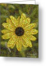 Blackeyed Suzy Mosaic Greeting Card