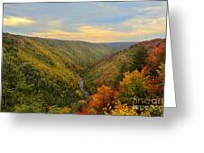 Blackwater Gorge With Fall Leaves Greeting Card by Dan Friend