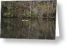 Blackwater Reflections Greeting Card