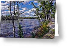 Blackwater River Greeting Card