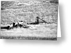 Black And White Of Old Farm Equipment Greeting Card