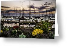 Blaine Harbor Greeting Card by Blanca Braun