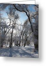 Blanket Of Snow Greeting Card by Jeff Swanson