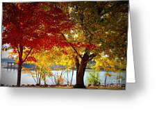 Blaze Of Color Greeting Card
