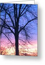 Blazing Sky Greeting Card