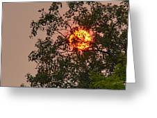 Blazing Sun Hiding Behind A Tree Greeting Card