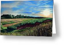 Blazing Sun On Farmland Greeting Card