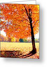 Blazing Tree Greeting Card