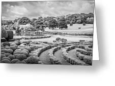 Bleak Topiary  Greeting Card