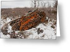 Bleak Winter Arctic Steppe Orange Lichens Rock Greeting Card