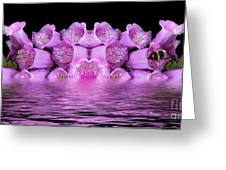 Bleeding Violet 2 Greeting Card