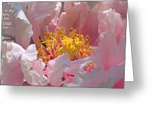 Blessings And Blossoms  Greeting Card