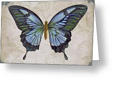 Bleu Papillon-a Greeting Card