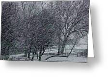Blizzard 2013 Greeting Card
