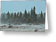 Blizzard Conditions Greeting Card