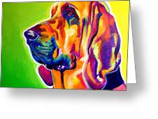 Bloodhound - Sunlight Greeting Card
