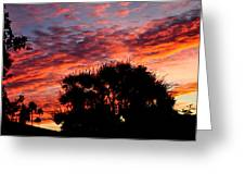 Bloody Sunset Over Palm Desert Greeting Card