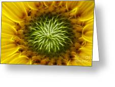 Bloom Of The Sunflower Greeting Card
