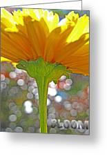 Bloom Yellow Daisy Greeting Card