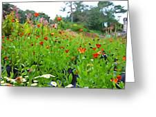 Blooming Beauties Greeting Card