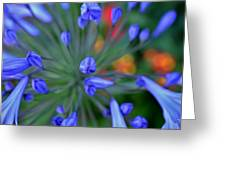 Blooming Blues Greeting Card