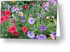 Blooming Extravaganza Greeting Card