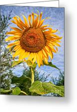 Blooming Sunflower V2 Greeting Card by Adrian Evans