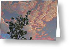 Blooming Tree And Sky Greeting Card