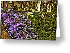 Blooms Beside The Steps Greeting Card