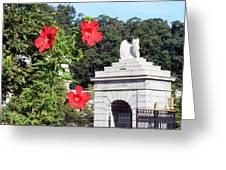 Blooms In Arlington Greeting Card