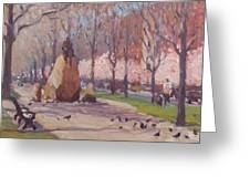 Blooms On Comm Ave Greeting Card